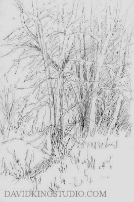 art ink pen sketch nature tree jordan river parkway