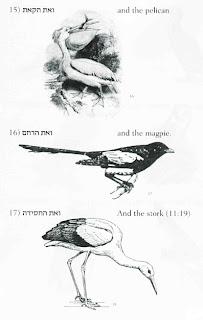 Wildbirds Broadcasting: Birds of a Religious Text Described