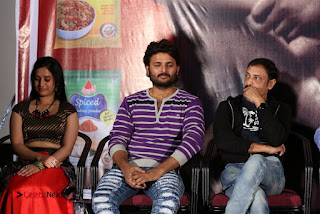 Nenostha Release Press Meet Stills  0045.jpg