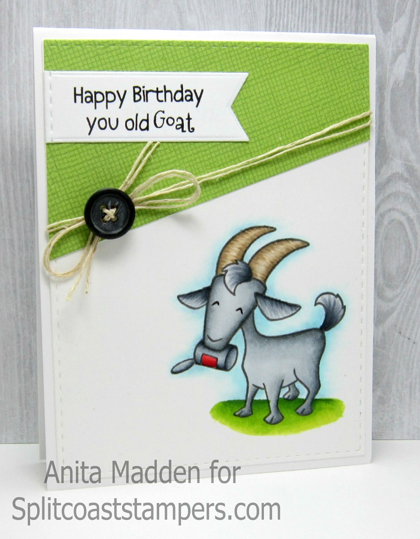 Just A Pigment Of My Imagination Happy Birthday You Old Goat – Goat Birthday Card