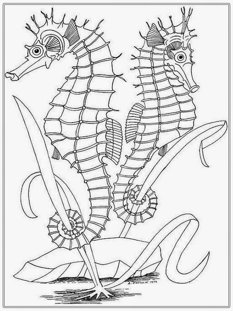 realistic coloring book pages - photo#40