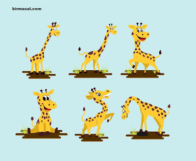 Zürafa Kibi