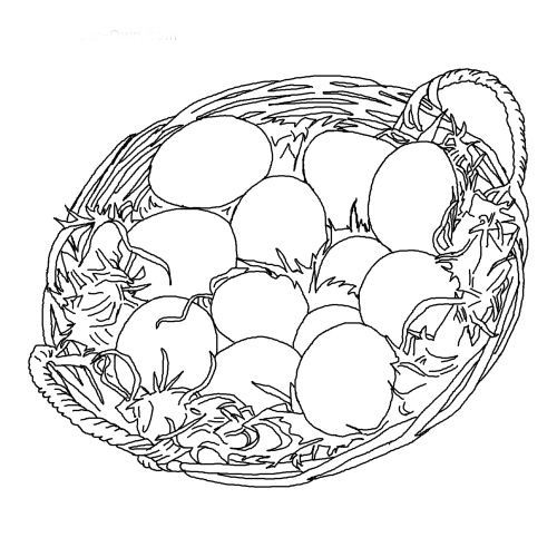 Egg Collecting Basket
