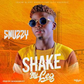 SNUZZY - SHAKE MY LEG