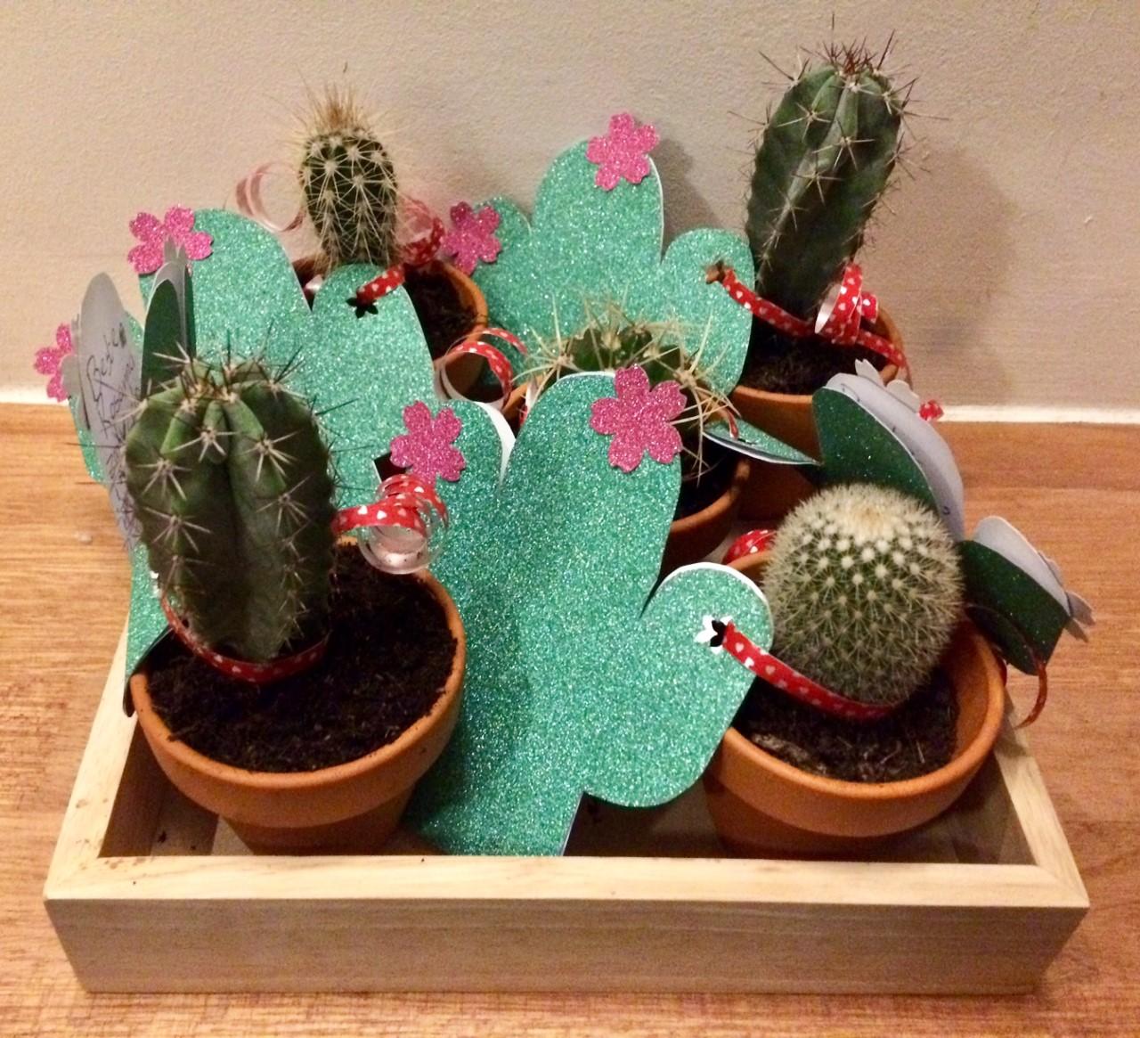 cactus invitations
