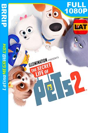 La Vida Secreta de tus Mascotas 2 (2019) Latino FULL HD 1080P ()