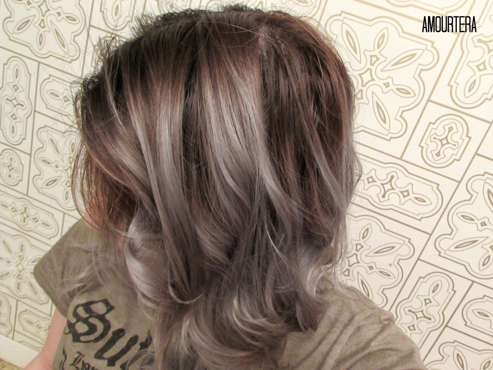Amourtera How To Get Silvergray Hair At Home