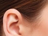 Mengenal Beberapa Penyakit dan Gangguan Telinga (Indra Pendengar Pada Manusia)