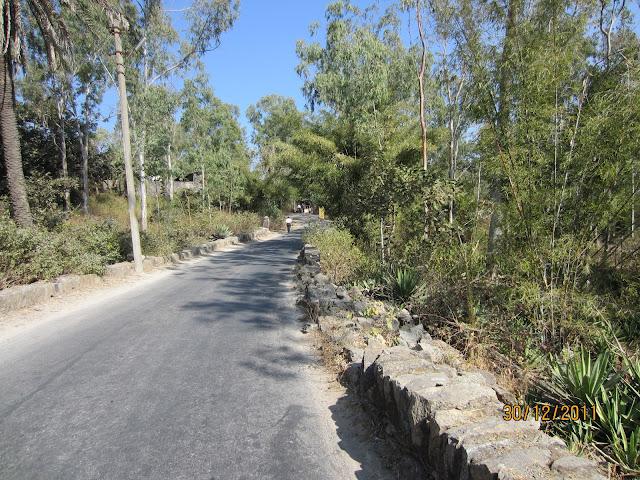 guru shikhar mount abu road