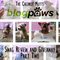 The Chesnut Mutts BlogPaws Swag Review and Giveaway Part Two
