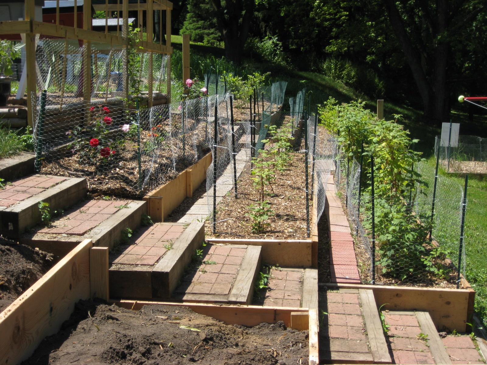 Red Bucket Farm: Garden Terraces on Steep Hill Backyard Ideas id=81636