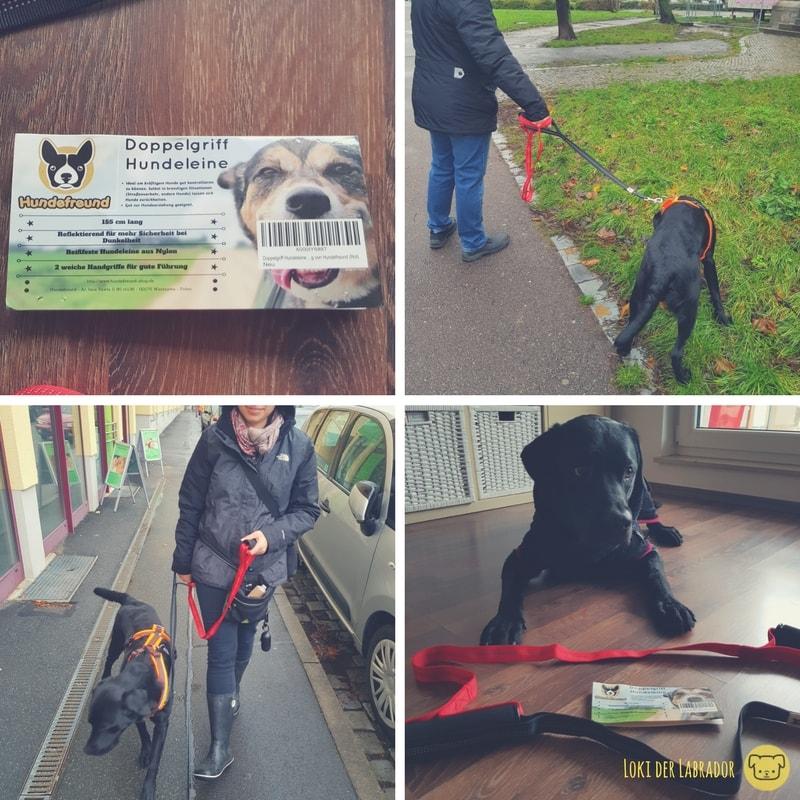 Doppelgriff Hundeleine Hundefreund Leinenführigkeit