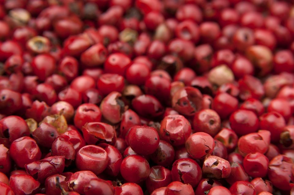 cara mengkonsumsi goji berry kering, harga goji berry, efek samping buah goji berry, buah goji berry di indonesia, harga goji berry kering, manfaat goji berry untuk kulit, jual buah goji berry segar, manfaat goji berry untuk diet,