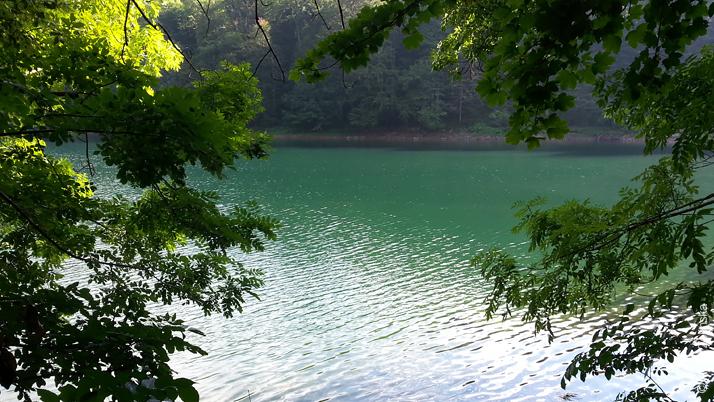 Биоградское озеро в парке, Черногория