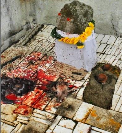 """Résultat de recherche d'images pour """"மிருக பலி"""""""