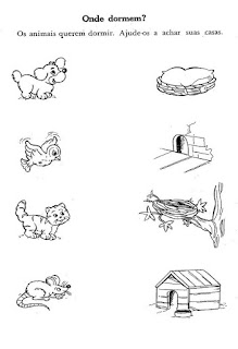 Os animais e suas casas