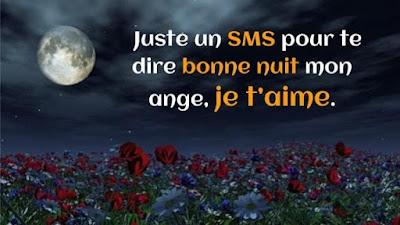 SMS bonne nuit romantique pour dire je t'aime.