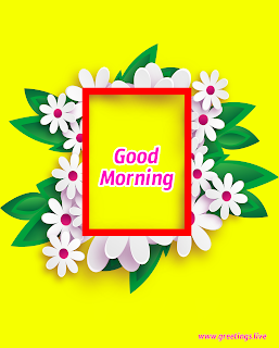 Flowers frame morning wishes