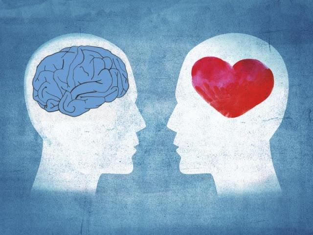 Hallan diferencias físicas entre el cerebro de las personas racionales y las emocionales