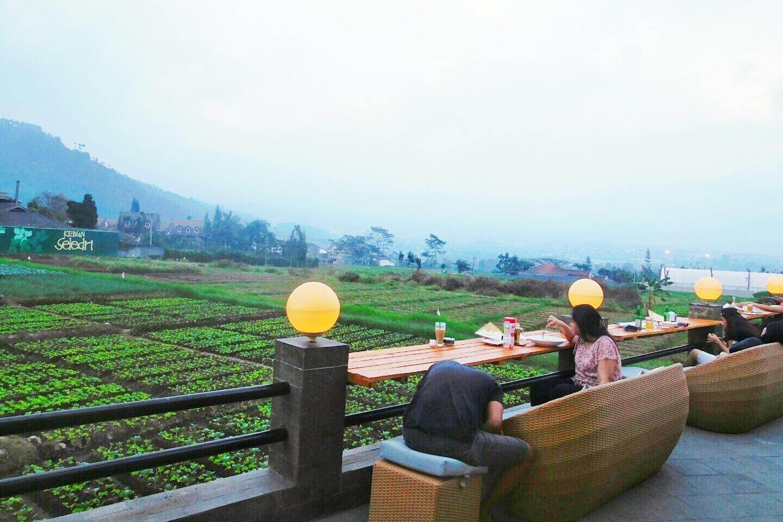 Pupuk Bawang Cafe Dining Batu Tempat Makan Dengan Pemandangan