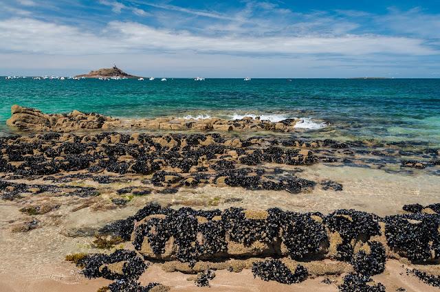 Bretania z dzieckiem opinie porady plaże widoki mini mont saint michel