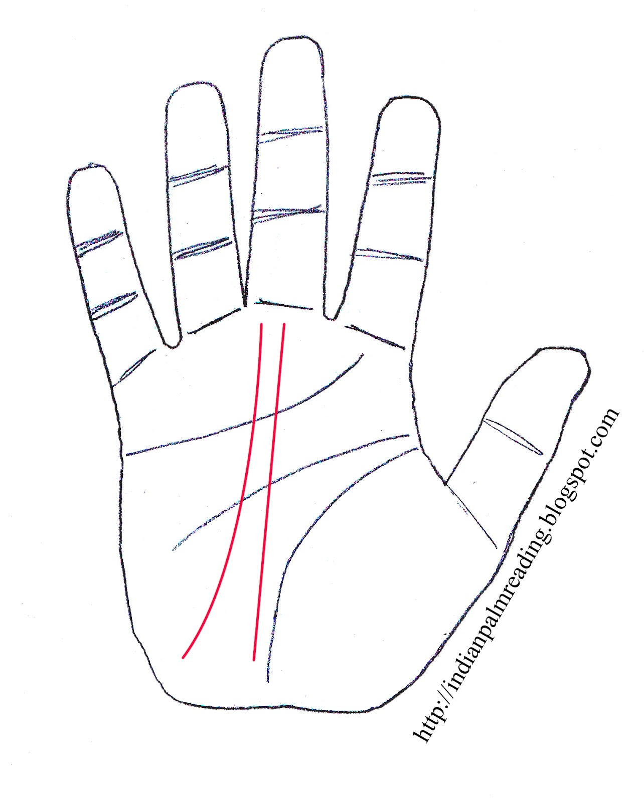 What Is The Meaning Of Double Fate Line | Palmistry | INDIAN