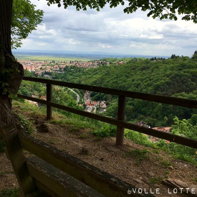 Pfalz, Aussicht, Tourismus, Pfälzer Wald