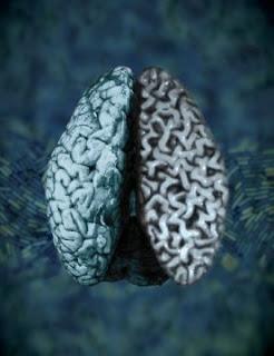 Bakteri Ini Tak Mau Kalah Canggih Dengan Kinerja Otak