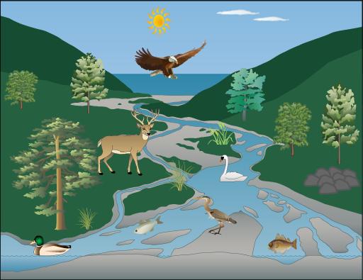 Komponen Satuan Dan Interaksi Dalam Ekosistem Mahkota Sains