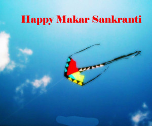 Makar Sankranti HD Wallpaper