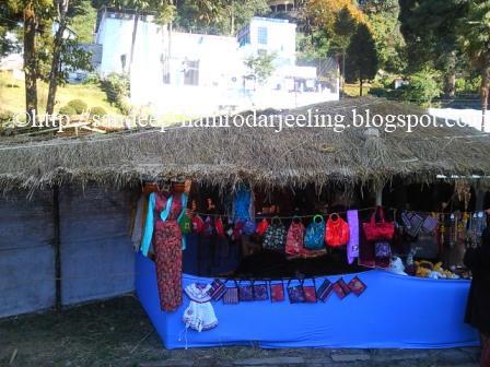 pictures tea and tourism darjeeling