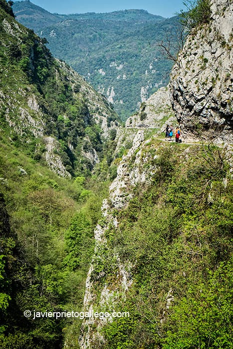 El camino bordea espectaculares cortados en el recorrido por el desfiladero de Las Xanas. Asturias. España. © Javier Prieto Gallego
