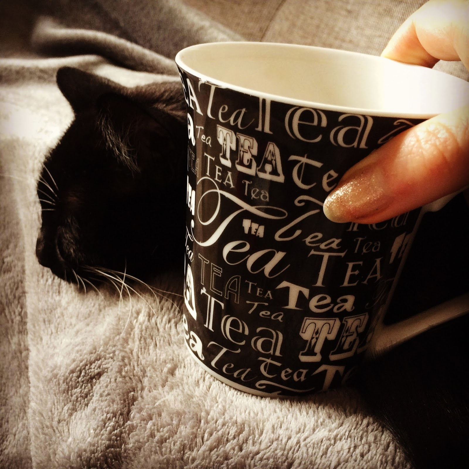 Here Have A Photo Of A Cute Cat, Fuzzy Blanket, And Tea Does That Make It  Better?