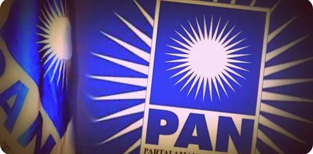 Dibenarkan, Pencopotan Bendum PAN Karena Dukung Jokowi-Ma'ruf