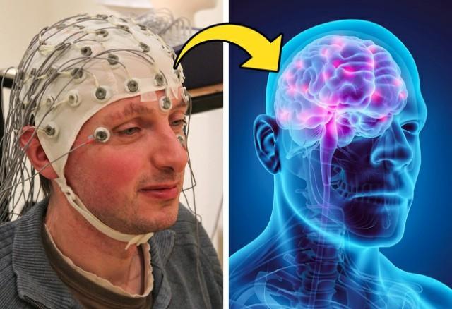 خرافة شائعة شائعة عن الدماغ