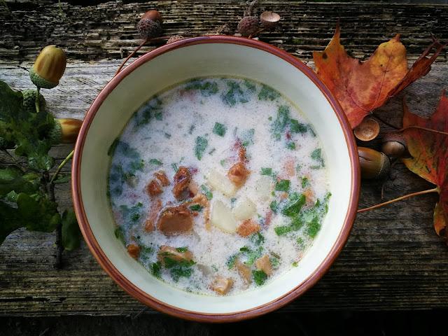 Aromatyczna zupa z kurek