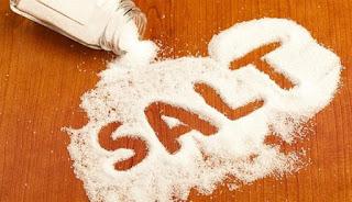 garam, komponen abiotik
