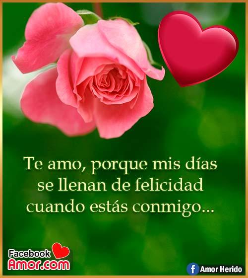 mensajes de amor con rosas