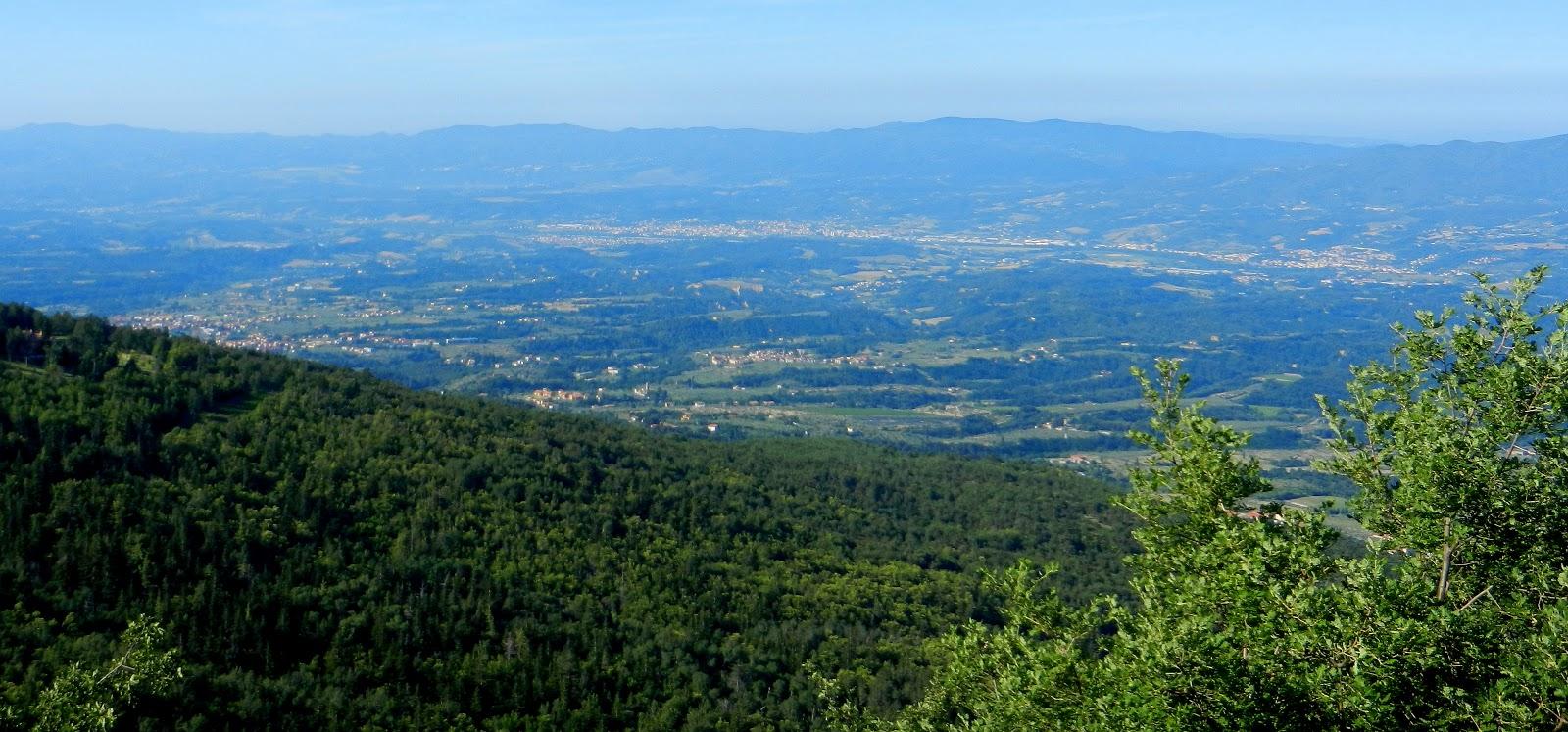 Il Pratone di Vallombrosa dentro la foresta di abeti  La mia bella Toscana