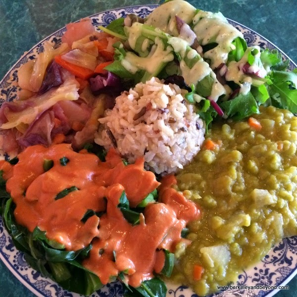 medium plate at Potala Vegan Restaurant in Albany, California