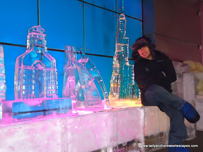 Ice Sculptures of Dubai infrastractures
