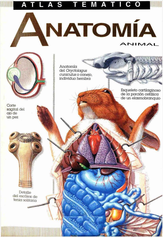Atlas Temático de Anatomía Animal | LibrosVirtual