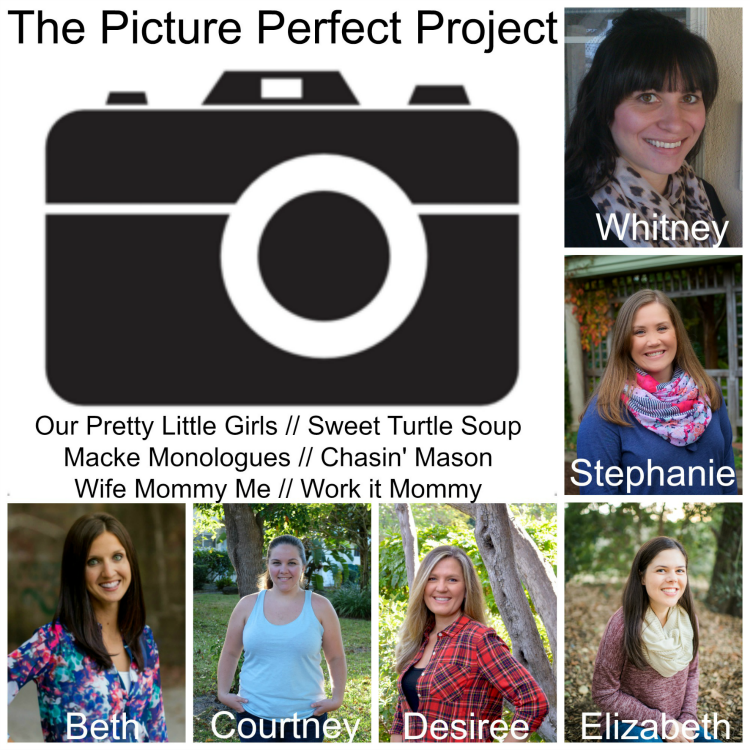 The Picture Perfect Project - a photo challenge link-up announcement!