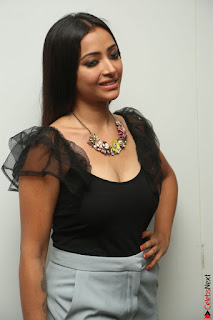 Swetha Basu in a Black Sleeveless Top Long Skirt at Mixture Potlam Movie Audio Launch 082.JPG