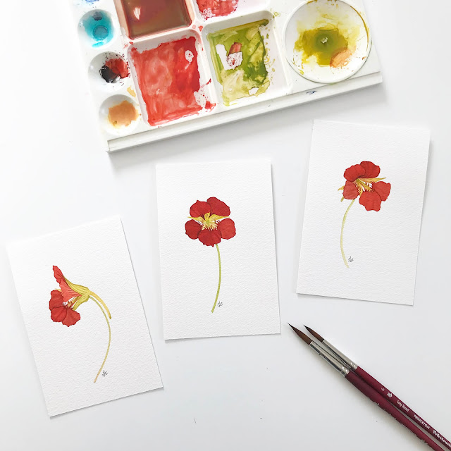 watercolor, nasturtiums, botanical watercolor, paintings, paint palette, Anne Butera, My Giant Strawberry