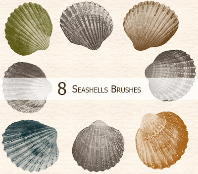 8 pinceles de conchas para photoshop cs5