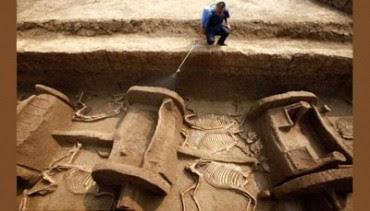 Ini Dia Kereta Kuda Berusia 3.000 Tahun