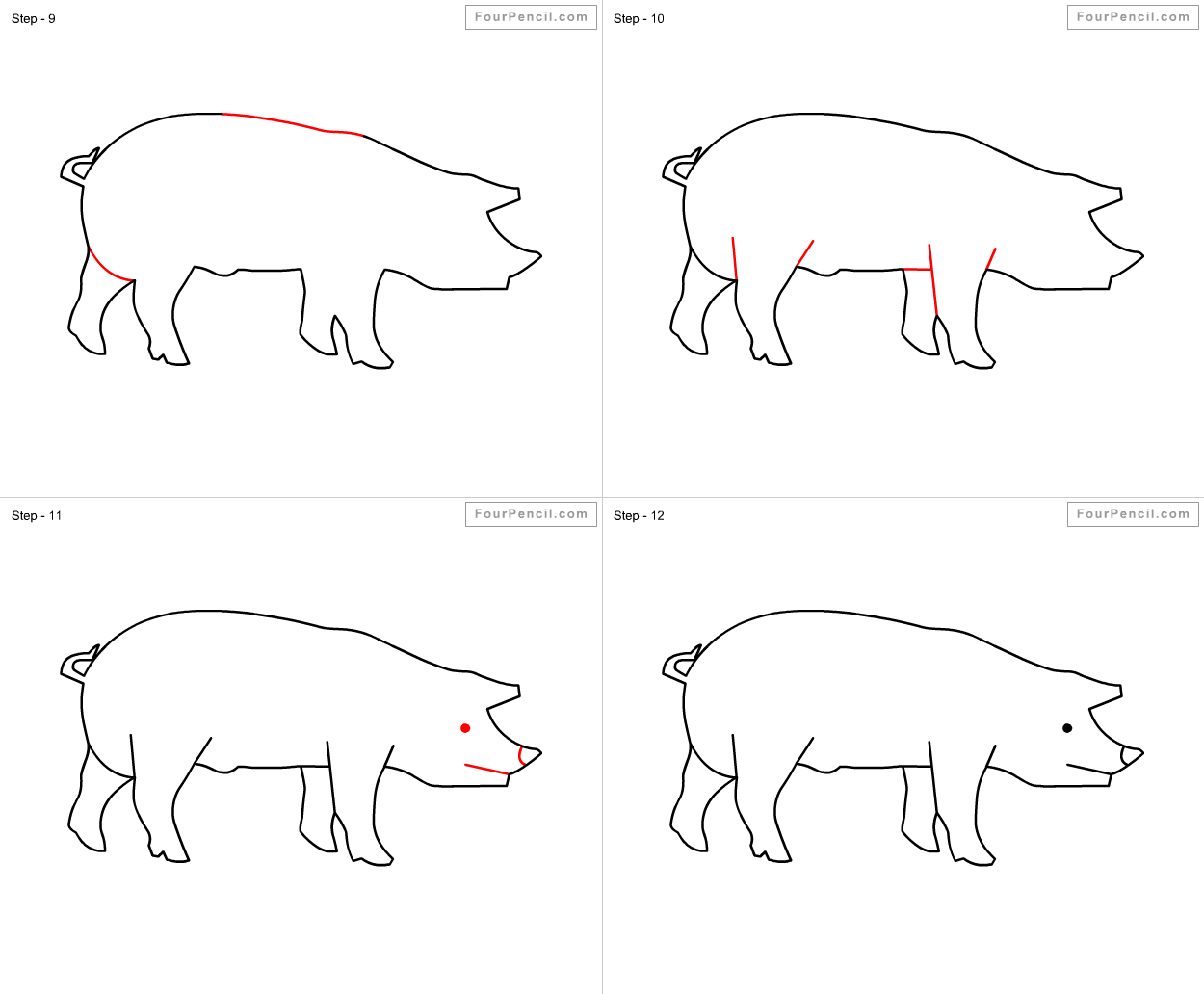 Omnivore animals drawing
