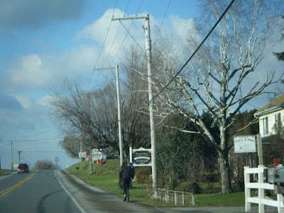 Things To See In Amish Pennsylvania