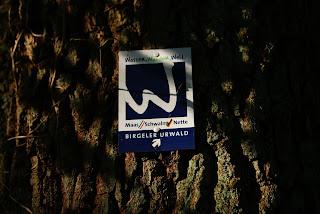 Die Markierung des Wanderwegs; Ein weißes W auf blauem Grund